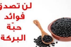 فوائد حبة البركة لصحة الإنسان