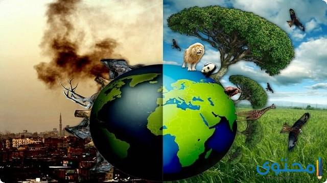 إذاعة مدرسية عن البيئة