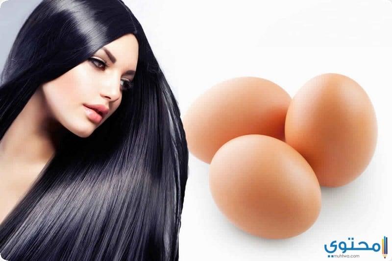 البيض للشعر