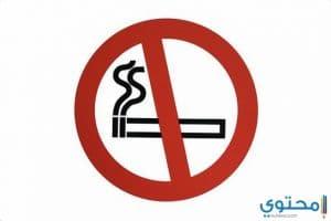 بحث عن المخدرات وأضرار التدخين