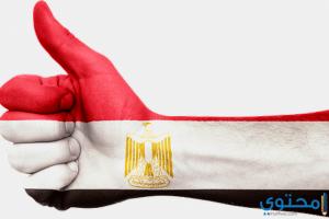 موضوع تعبير عن الجيش المصري