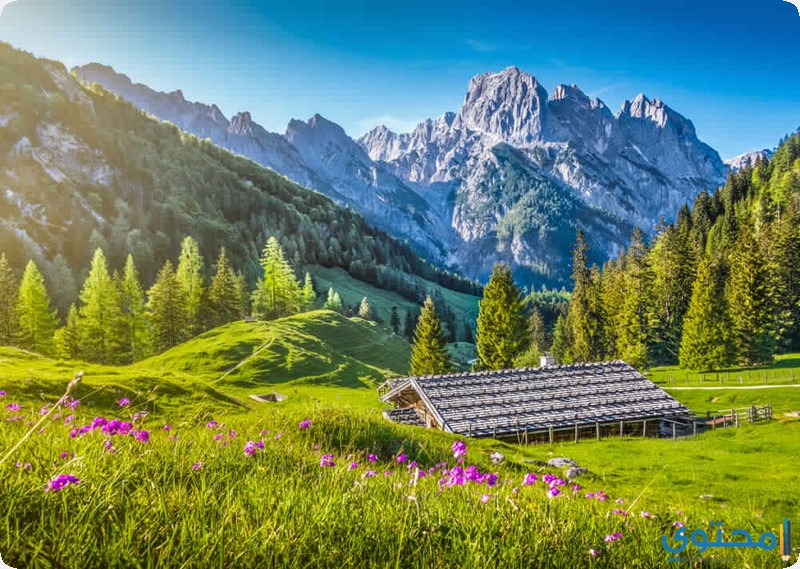 الحديقة الوطنية السويسرية