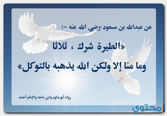 التشاؤم في الإسلام