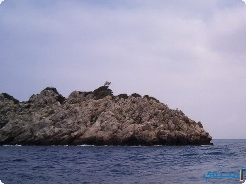 جزيرة الحمام