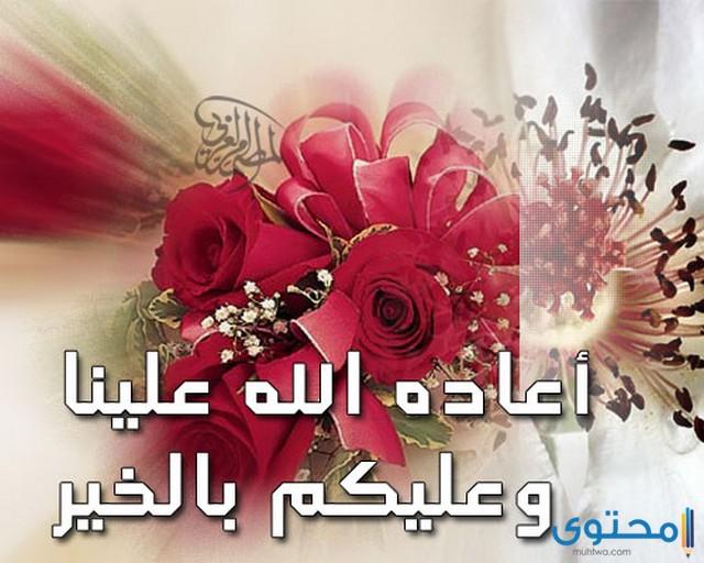 الرد على اضحى مبارك