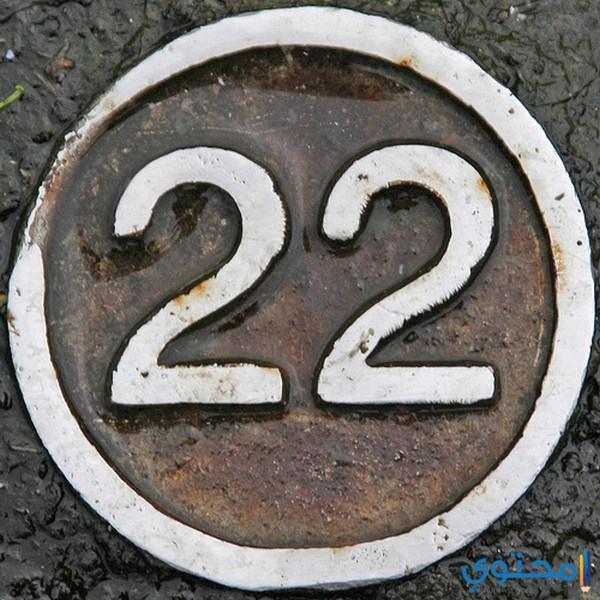 الصفات العامة لأصحاب مسار الحياة رقم 22