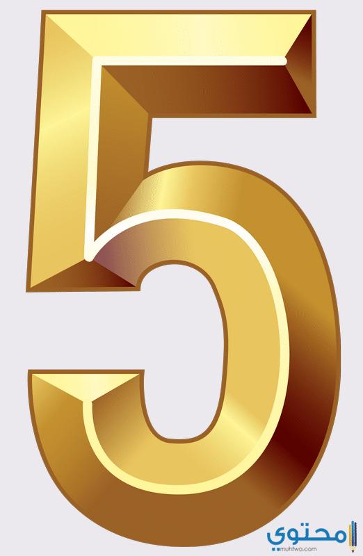 الصفات العامة لأصحاب مسار الحياة رقم 5