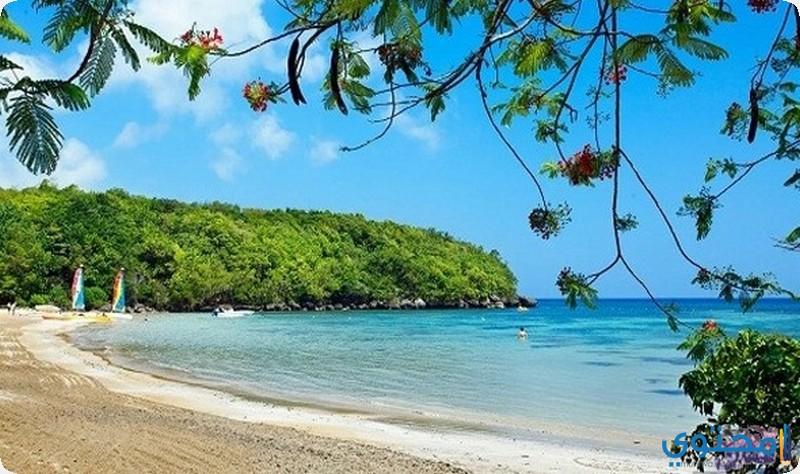 ساحل جامايكا الجنوبي