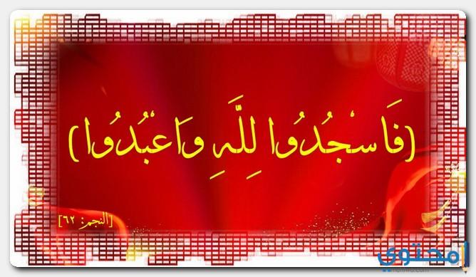 السجدات في القرآن الكريم