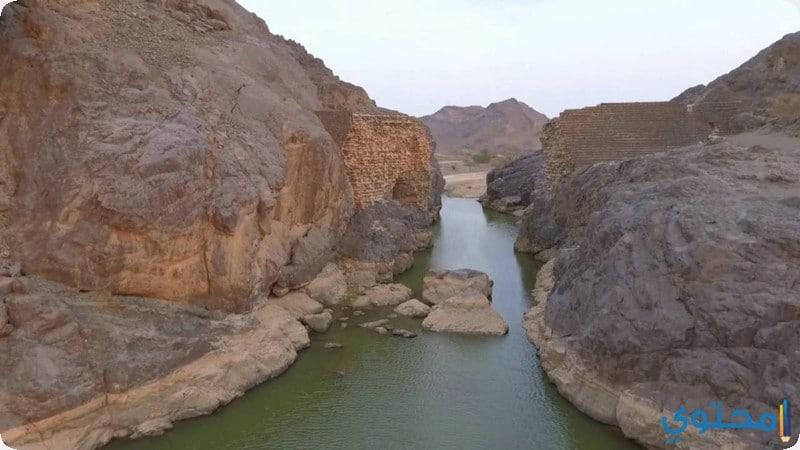 وادي السد