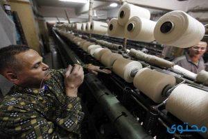 معلومات عن شركة العربية لحليج الأقطان