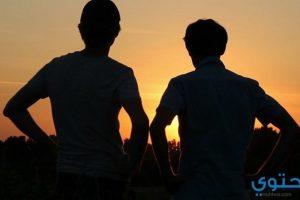 قصص عن الصداقة
