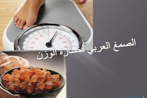 فوائد الصمغ العربي للتخسيس