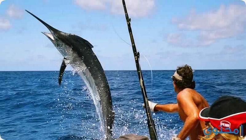 الصيد فى جزيرة موريشيوس