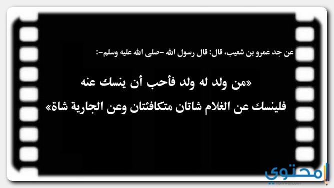 العقيقة في الإسلام
