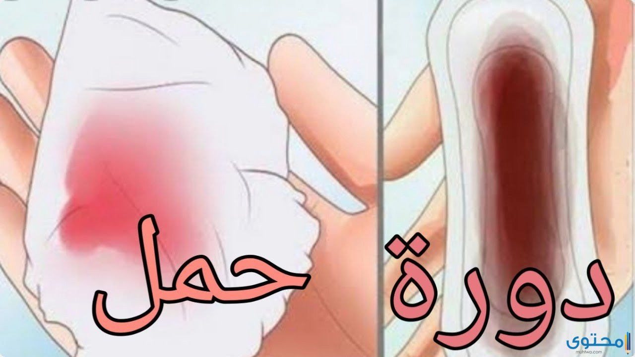 الفرق بين دم الدورة ودم الحمل
