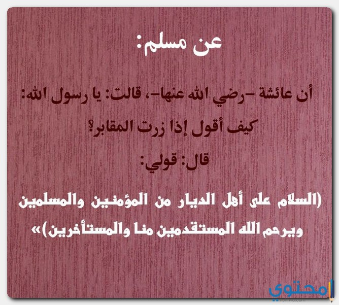 حكم زيارة القبور في الشريعة الإسلامية موقع محتوى