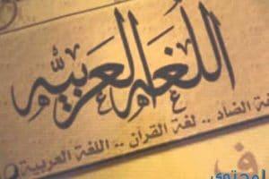 موضوع تعبير عن أهمية اللغة العربية