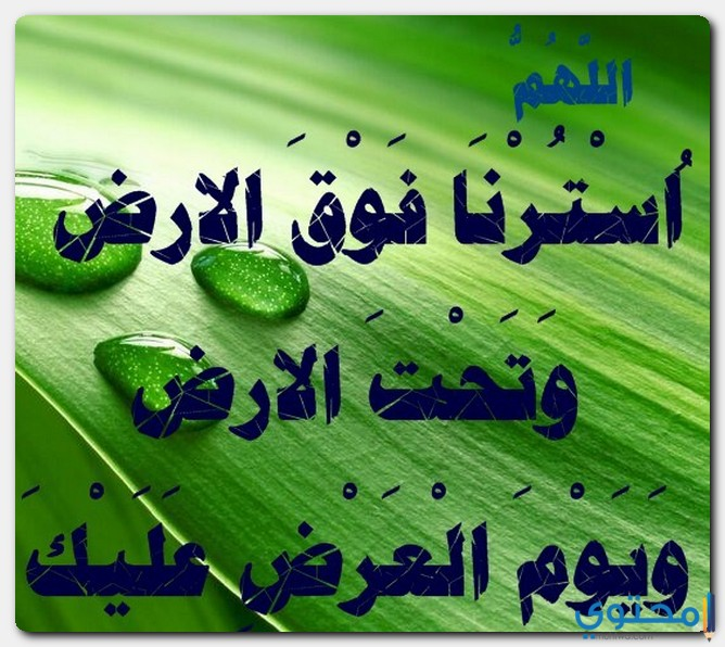 اللهم استرنا فوق الارض