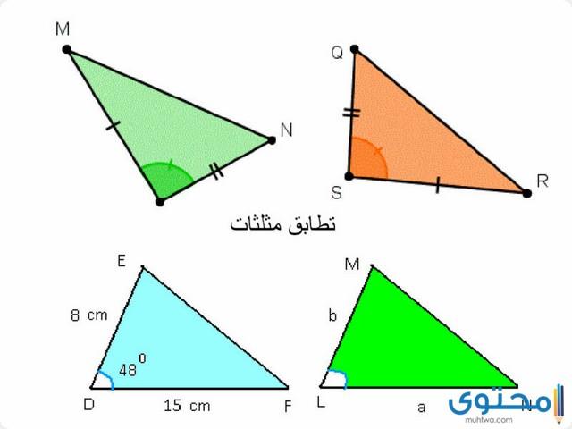 بحث عن المثلثات المتشابهة موقع محتوى