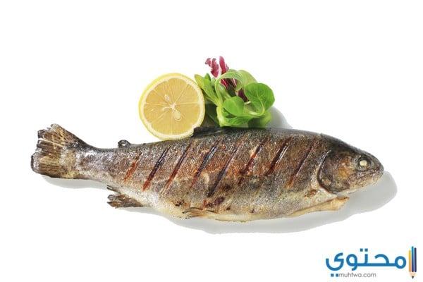 الإكثار من تناول الأسماك والمأكولات البحرية