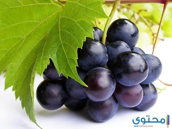 تناول العنب الأسود