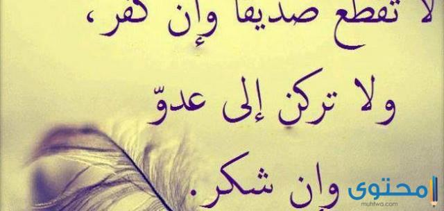 أشهر الأمثال السعودية
