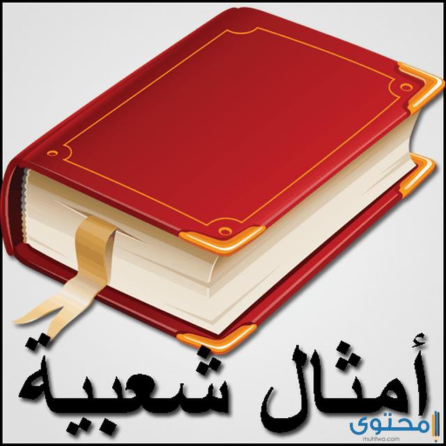 اشهر امثال وحكم مصرية شعبية عن الرجال