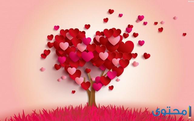 امثال عن الحب