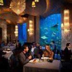 أفضل مطاعم دبي 2018