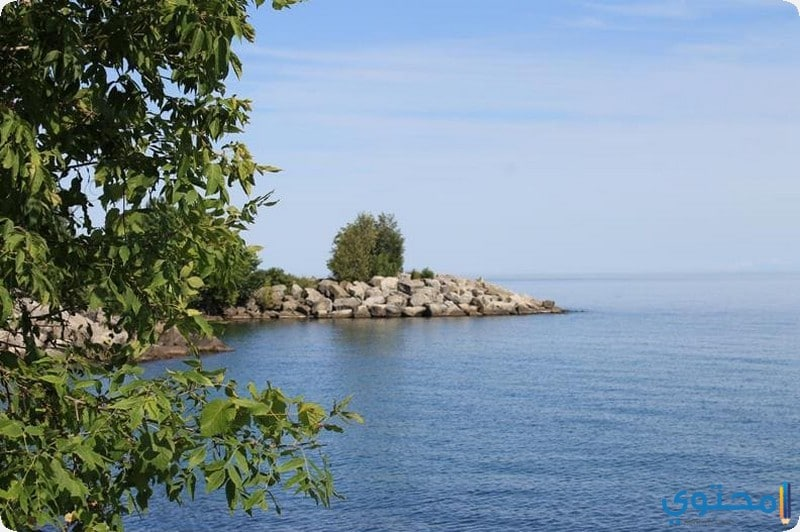 بحيرة اونتاريو