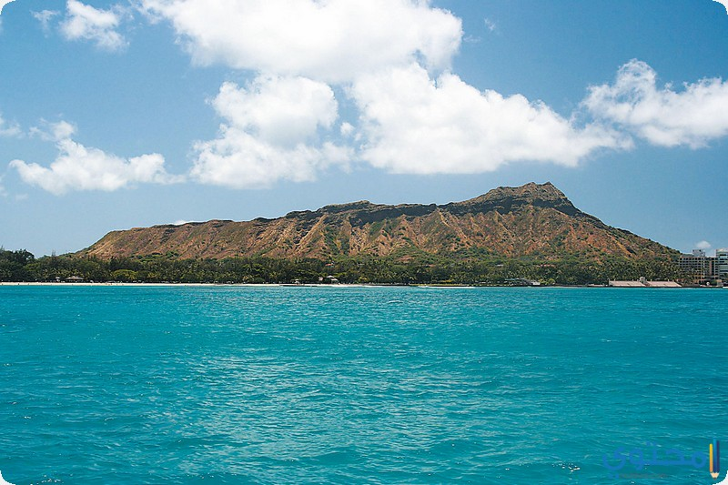 جزيرة أواهو