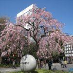 اجمل حدائق اليابان بالصور
