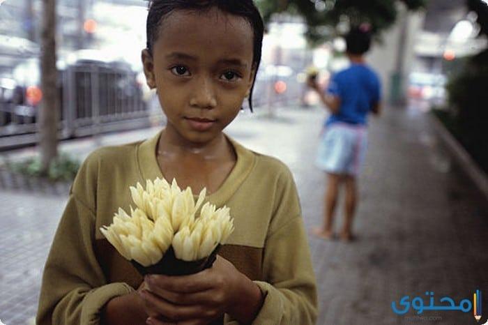 بحث عن أطفال الشوارع