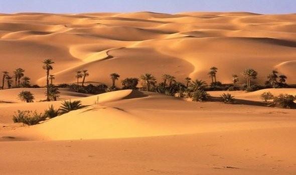 بحث عن البيئة الصحراوية في مصر