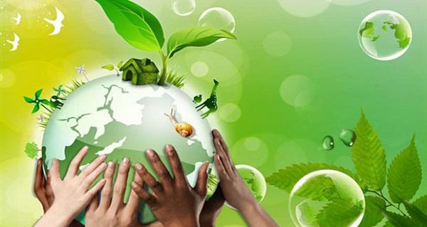 بحث عن البيئة النظيفة والبيئة الملوثة