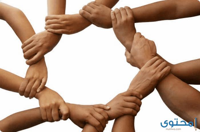 بحث عن التعاون بين الناس