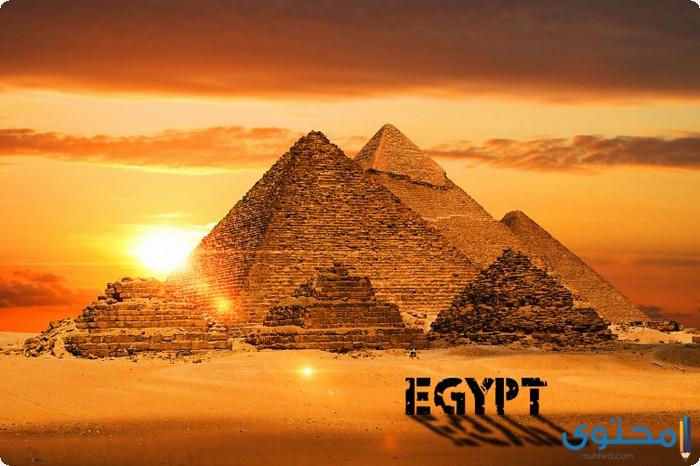 بحث عن الحضارة المصرية القديمة بالعناصر الرئيسيه