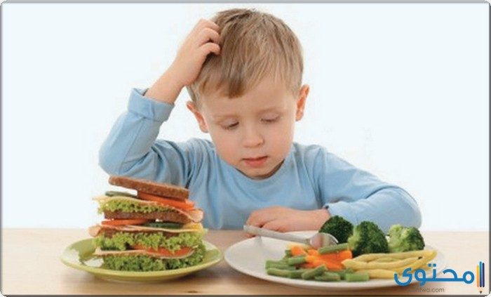 بحث عن الغذاء وصحة الجسم