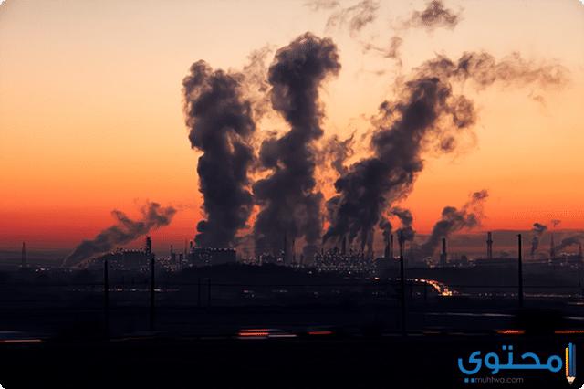 ملوثات البيئة