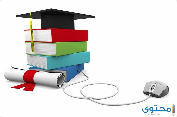 بحث عن تطوير التعليم في مصر بالعناصر