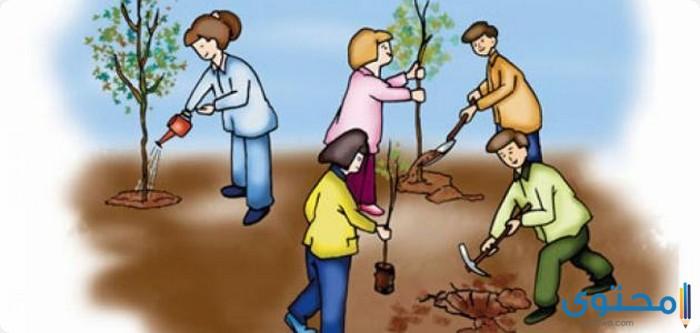 التعليم وتطويره 2019_ تنظيف الحي