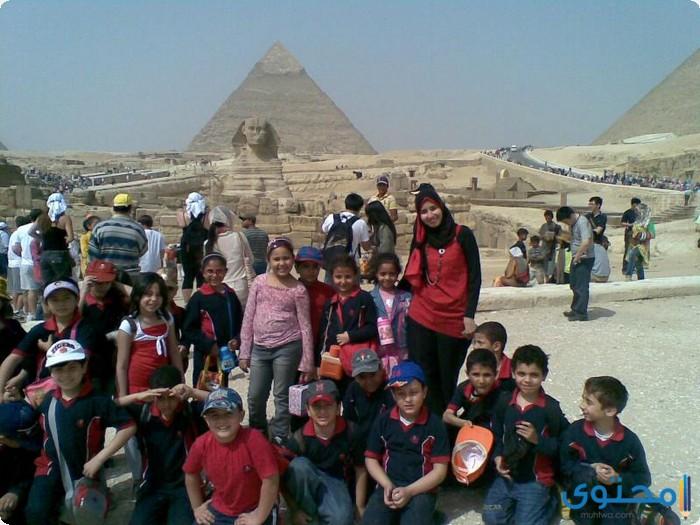 بحث عن رحلة إلى الإهرامات