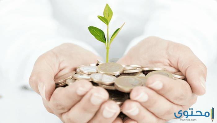 بحث عن طرق الحفاظ على المال العام