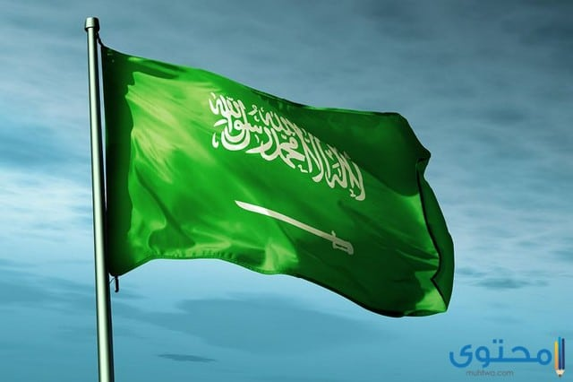 بحث عن عالم العمل في المملكة العربية السعودية موقع محتوى