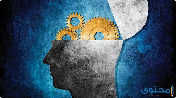 بحث عن علم النفس بالعناصر الرئيسيه