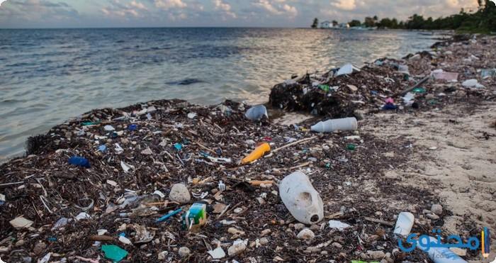 بحث عن مصادر تلوث المياه