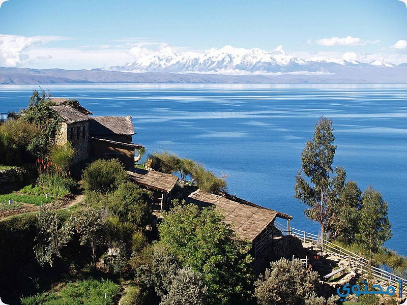 بحيرة تيتيكاكا
