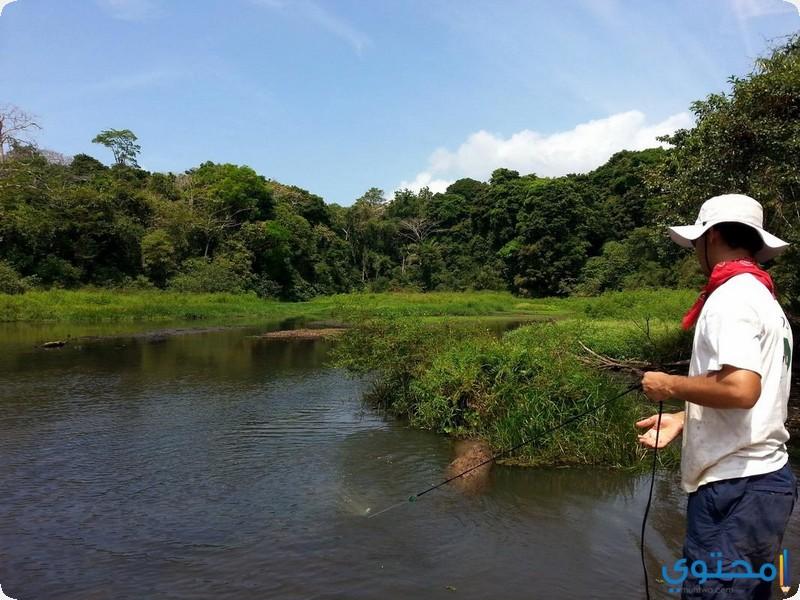 بحيرة غاتون في بنما
