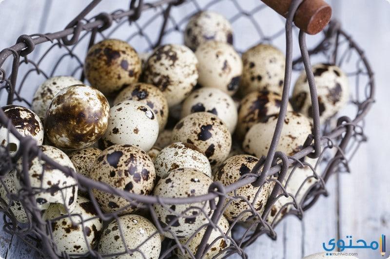 أضرار تناول بيض السمان
